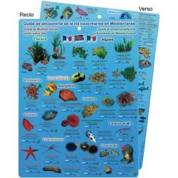 Plaquette Simple Guide de...