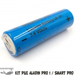 Batterie pour ALADIN PRO 1...